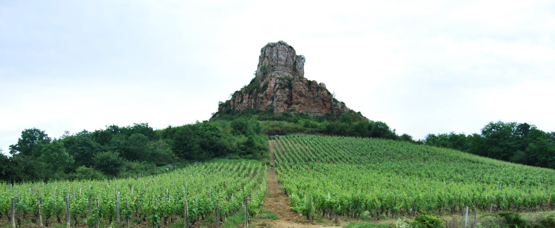 Maconnais and Beaujolais Day Trip Experience Gallery