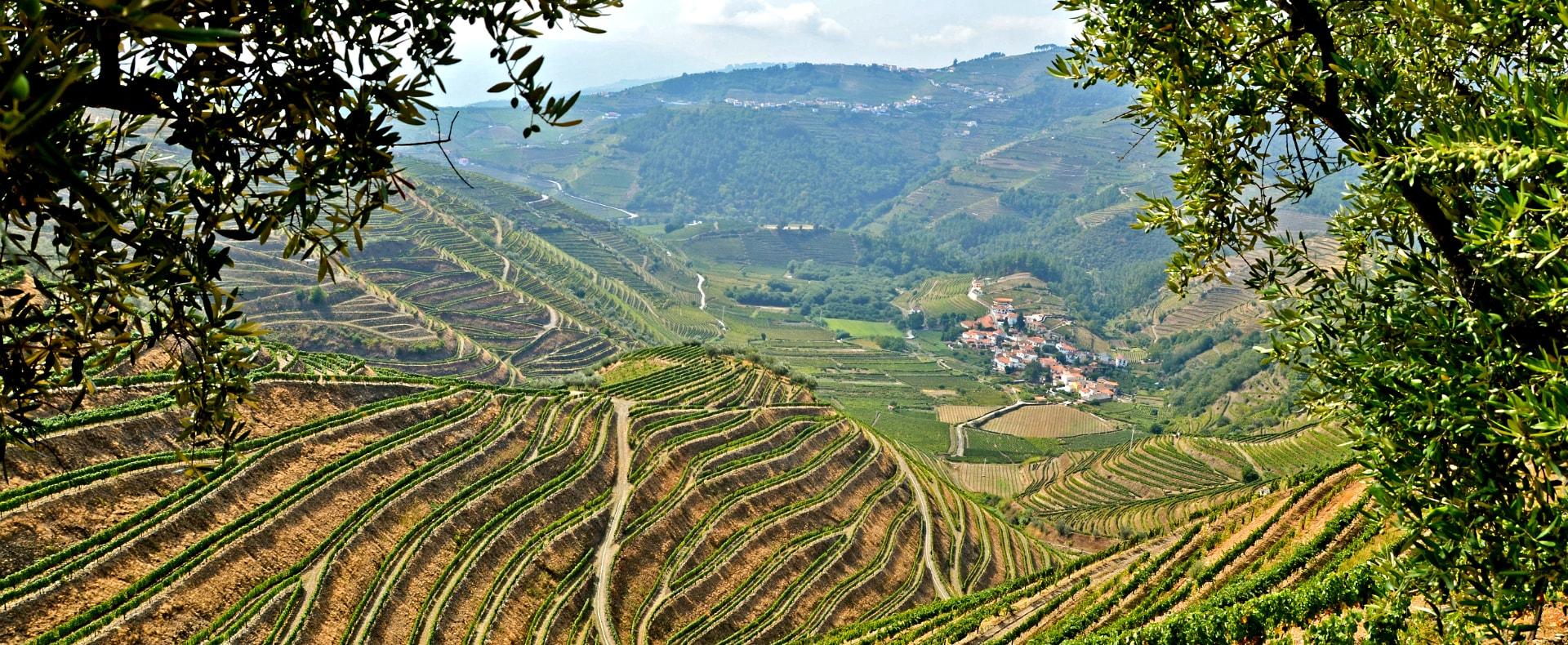 Pinhao, Portugal Douro Valley
