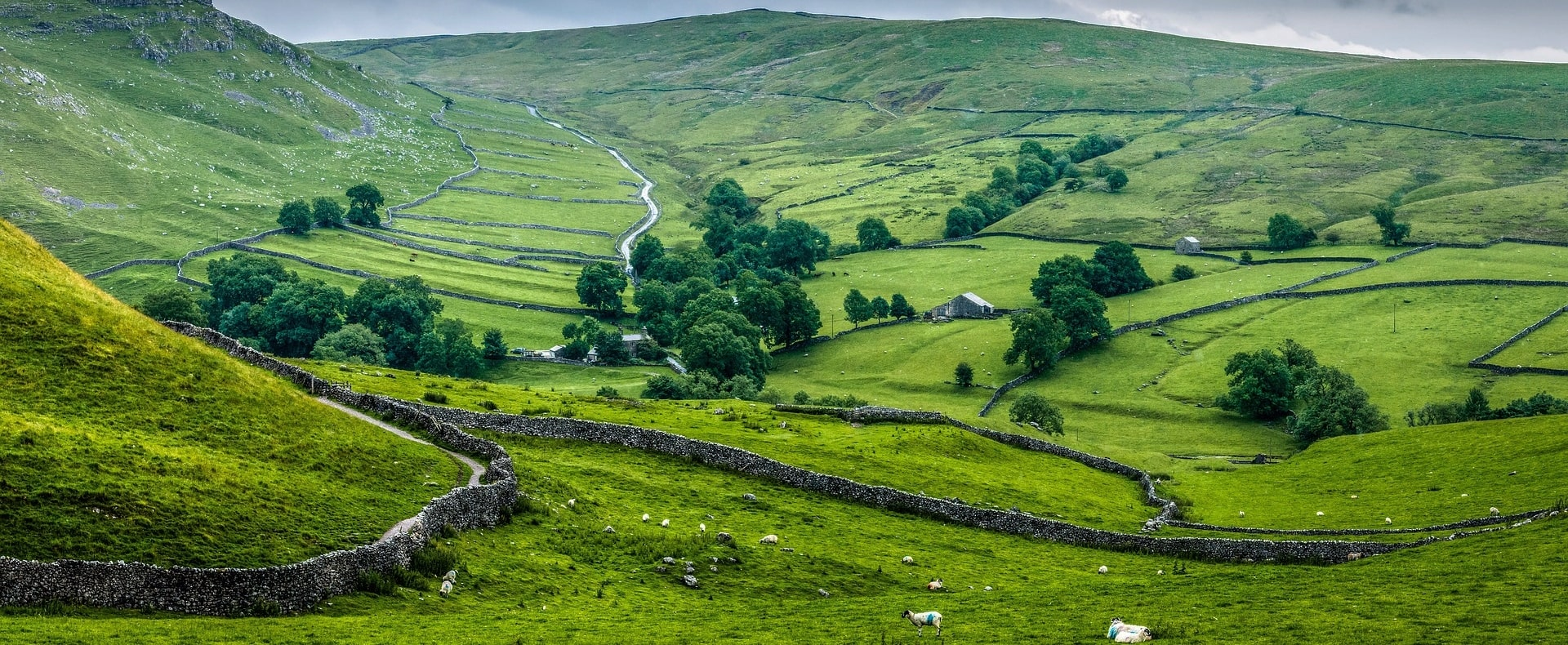Yorkshire Countryside Tour Experience Gallery