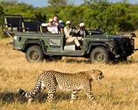 Experience pure African spirit on our premium safaris