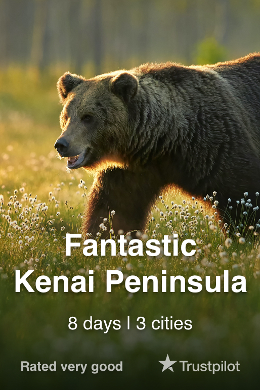 view Fantastic Kenai Peninsula Tour