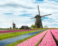 Discover Netherlands & Belgium with Firebird Tours