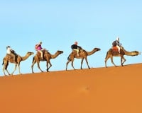 Discover Morocco with Firebird Tours