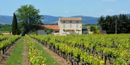 Champagne Wine Region, France