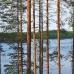 Nuuksio National Park, Helsinki, Finland