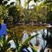 The Majorelle Garden, Morocco Sight