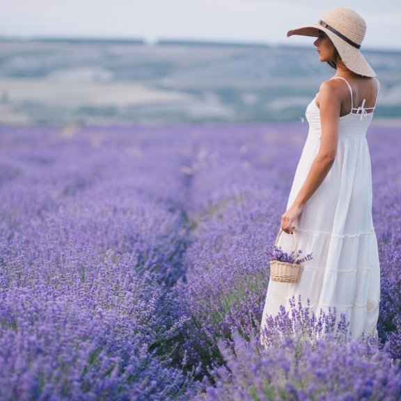 Private Tailor-Made Tours of France